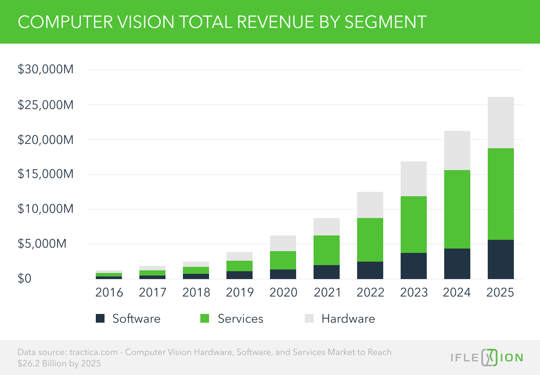 Computer Vision Total Revenue by Segment